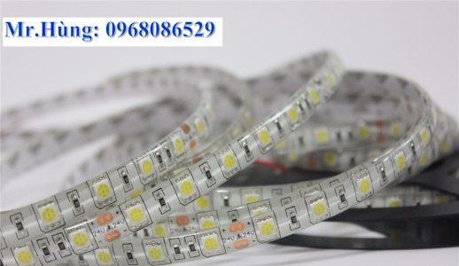 Led cuộn mắt 5054 màu trắng