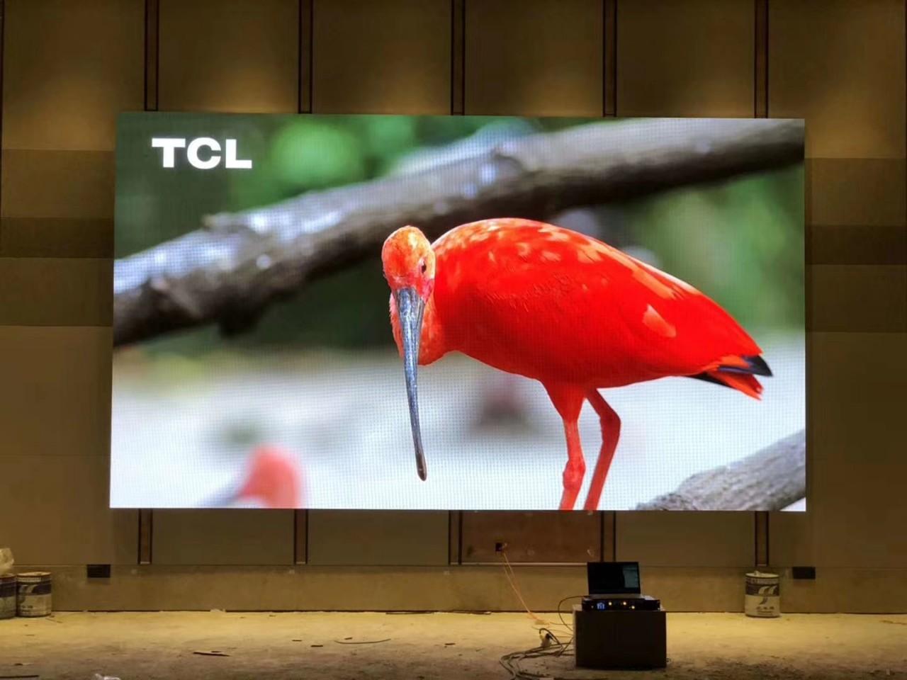 Thi công màn hình Led P3 Gloshine Shenzhen-2