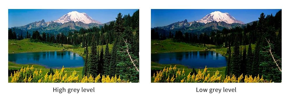 hình ảnh trước và sau khi xử lý